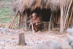 Irian Jaya019.jpg